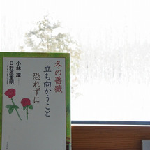 おすすめ本