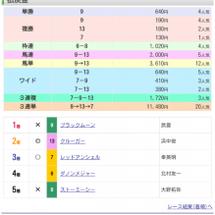 中山&京都金杯G3ダ…
