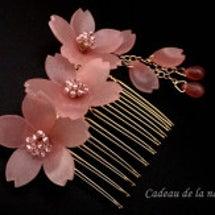 コーラルピンクの桜の…