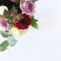 お正月のお花から春ら…