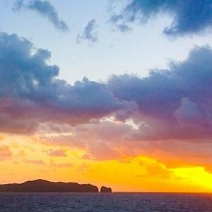 最近の母島の画像