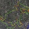 GPS地上絵31「大山顕さんの山王子犬に参加」結果報告(GPS drawing)の画像