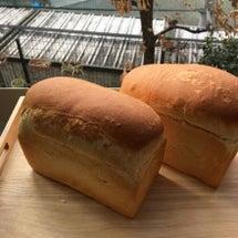 初焼き パン