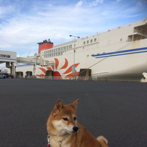 柴犬と北海道へ その…