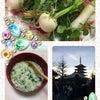 七草粥♡の画像