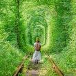 緑のトンネル(201…