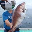 豪雨後の鯛釣り