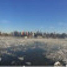 ニューヨーク ニュー…