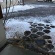 雪⁝⁝⸃₍⁽΄˙̥΄…