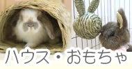 かじり木卒業運動