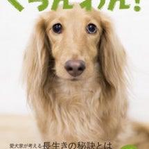 ぐらんわん!最新号【…