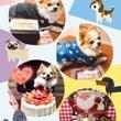 2018年☆あけおめ…