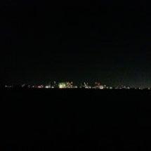 1月11日 浜名湖 …