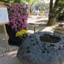古賀神社のハートの形…