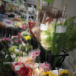 花市場 はじめ!