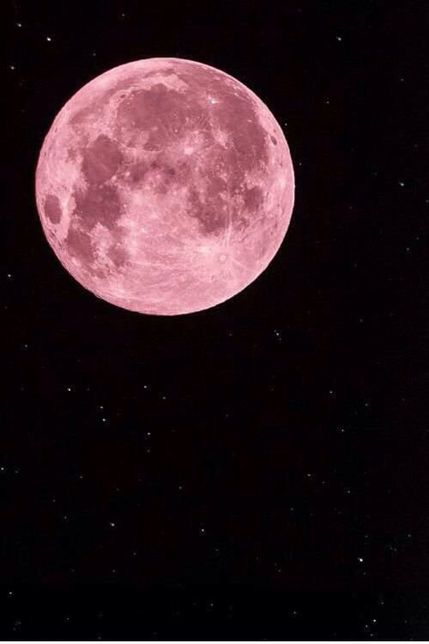 思考が現実になる:上弦の月から満月までの過ごし方