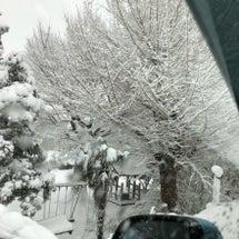 雪の影響と週末のイベ…