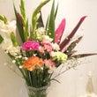 今年初のお花の更新☆