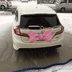 大雪のお蔭でブログカスタマイズできました
