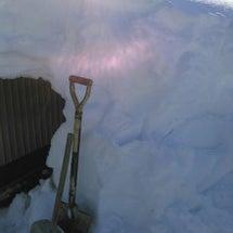 雪下ろしは進むワン。
