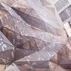 銀座1丁目の銀色凸凹ビル(^^)の画像