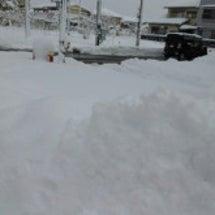雪すごい~