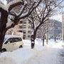天気:雪 明日から初…