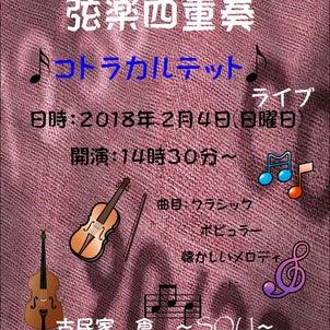 弦楽四重奏 ライブの画像
