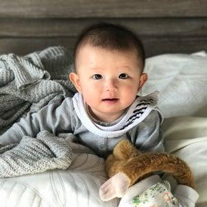 赤ちゃん連れハワイの画像