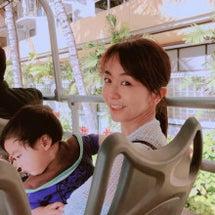 ハワイ日記③〜動く編…
