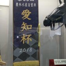 中京競馬 第55回 …