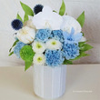胡蝶蘭と青いカーネー…