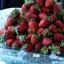 ホテルビュッフェの苺は本当に美味しいのか?!帝国ホテル大阪の苺スイーツブフェ(PR)