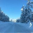 雪の紫外線反射率は〇…