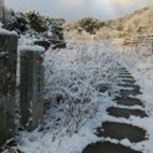 3番札所金泉寺雪景色…