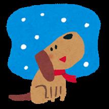 寒い日のヨガレッスン…