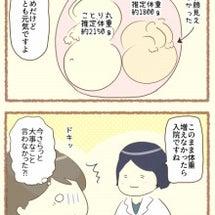 【双子妊娠34週】妊…
