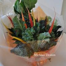 真冬 緑黄色野菜のブ…