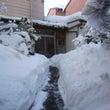 雪と格闘の2日間でし…