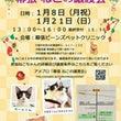 """""""1/12 お散歩報…"""