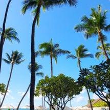 ハワイ到着日のお約束…
