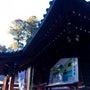 箱根神社⛩九頭龍神社