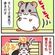 【ハム4コマ・10】…