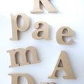 PAS A PAS -DIYとGREENのある暮らし-