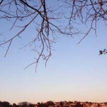 冬もいきいきと♡温活…
