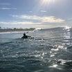 CA day5 まだ波はすごく良くて♪お友達登場〜❤︎