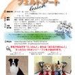 2月愛知県清洲市お教…