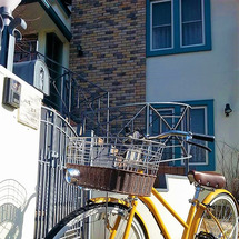 ついに自転車を買いま…