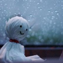 久しぶりの雨でしたね