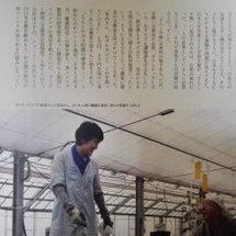日本ではじめて硝酸態…